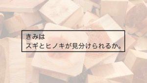 製材所で木材の話を聞いたら木の家が建てたくなった【国産材◎】
