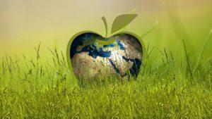 リンゴの地球